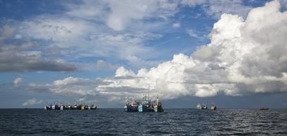 Fishing Vessels in Surat Thani