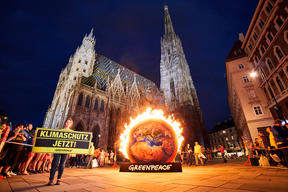 Burning Earth Action in Vienna