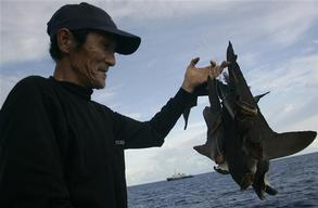 Fishing Documentation - Defending Our Oceans (Pacific: 2006)