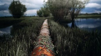 Oil Pipeline in Siberia
