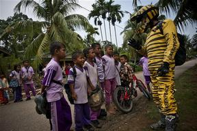 Tiger's Eye Tour in Indonesia