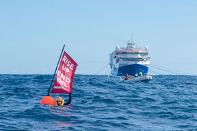 Disrupting Seismic Testing Vessel with Swimmers in New Zealand