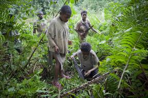 Pygmy People Hunt in the Forest in Cameroon