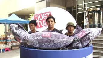 Tuna Global Day of Action (Clean - International Version)