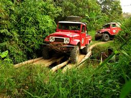 Two Jeeps Passing a Bridge in the Street of Jambi
