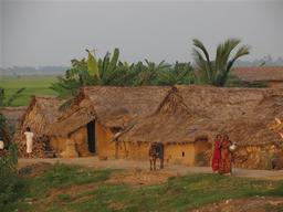 Climate Orissa Impact Documentation India
