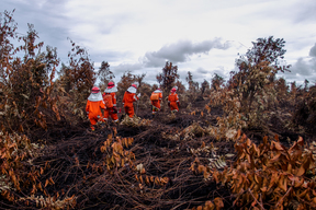FFP Deployment 2017 Mopping Up Fire in West Kalimantan
