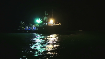 B-ROLL: Night Time Fisheries Investigations Mauritania