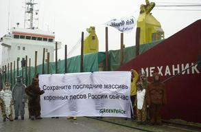 Russian Timber Ship Occupation in Germany