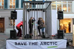 Save The Arctic Tour in Luzern
