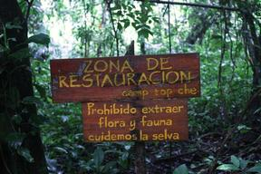 Sign in Mexican Rainforest