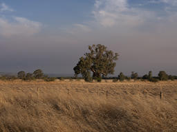 Smoke Haze across North-Eastern Victoria, Australia