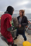 Journalist Interviews Greenpeace Diver in the North Sea