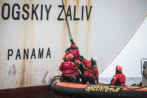 Activists Inspect the Taganrogskiy Zaliv Reefer in Antarctica