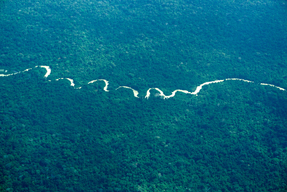 Aerial View over Amazon RainForest