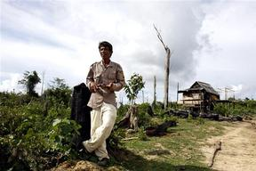 Farmer in East Kalimantan